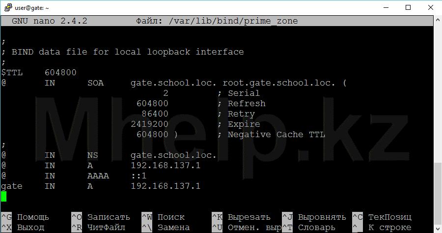 Ubuntu Server Настройка DNS сервера, настройка зоны прямого просмотра - Mhelp.kz