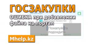 Исправление ошибки на портале госзакупки РК - MHelp.kz